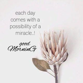 Good Morning Quotes | Good Night Wishes