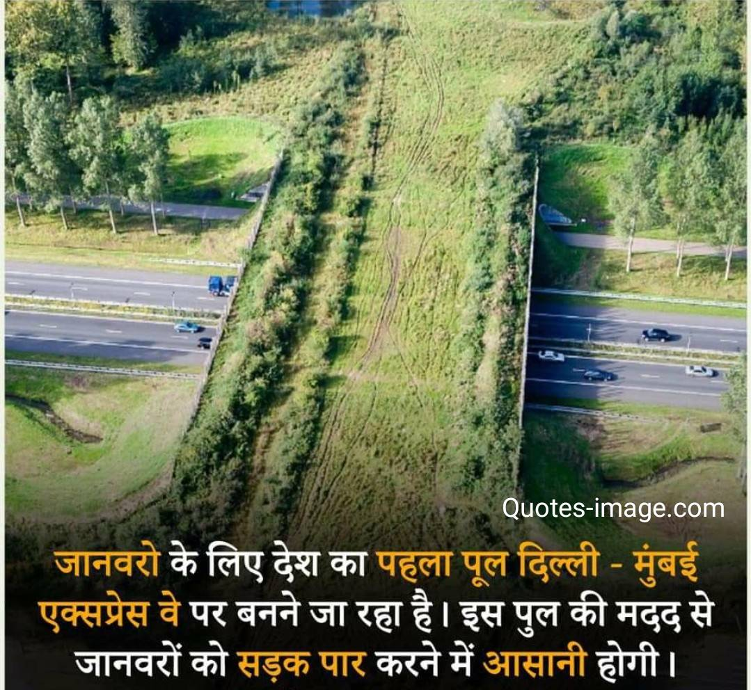 Facts About Delhi | Facts About India | Delhi Mumbai Express Way