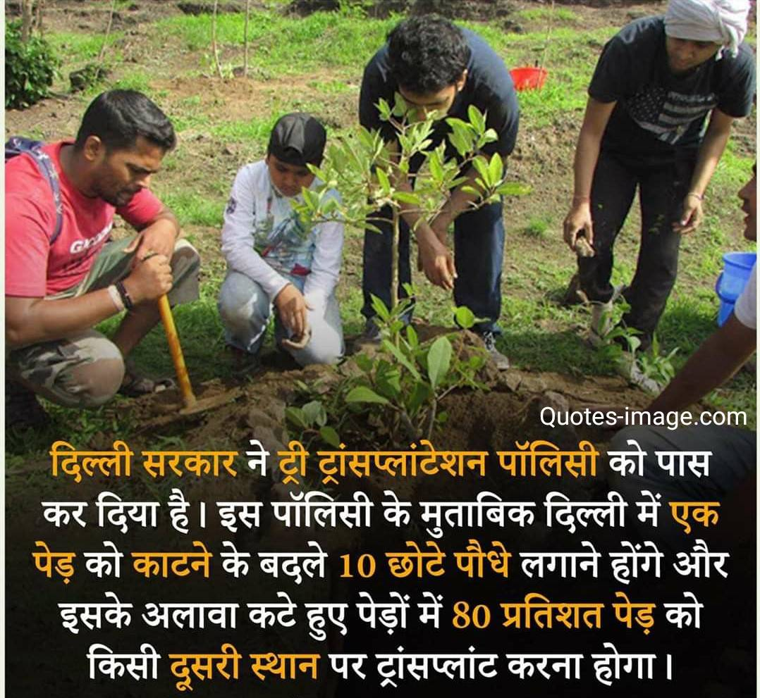 Facts About Delhi | Facts About India | Tree Transplantation Policy