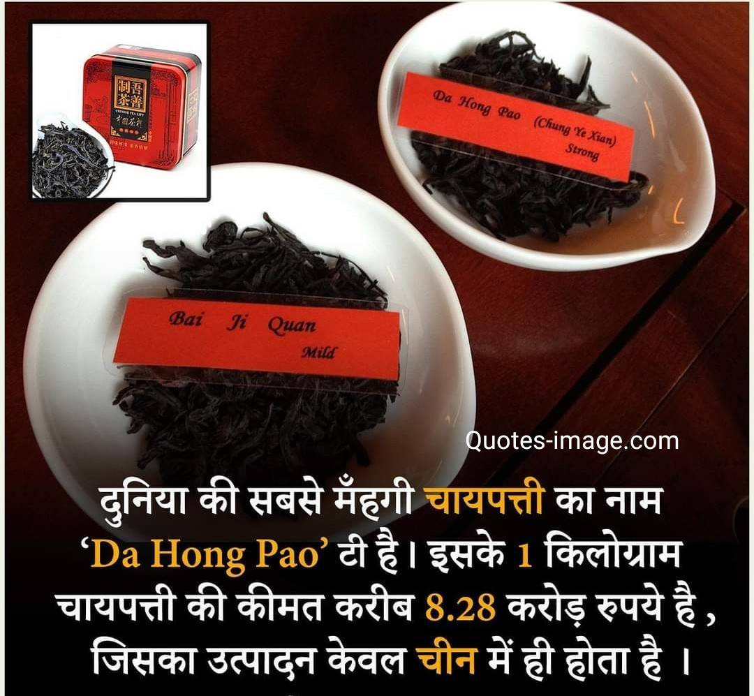 Da Hong Pao | Facts About China | Facts About Tea